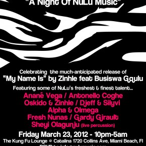 A Night Of NuLu Music, MIAMI WMC 2012